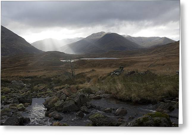 Glen Affric Storm Greeting Card by Sue Arber