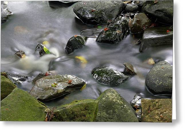 Glenariff River Greeting Card