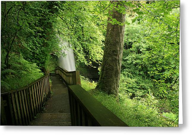 Glencar Waterfall Greeting Card