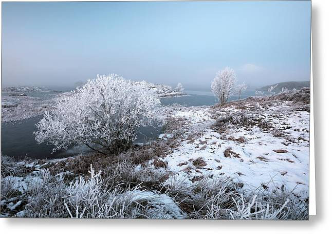 Greeting Card featuring the photograph Rannoch Moor Winter Mist by Grant Glendinning