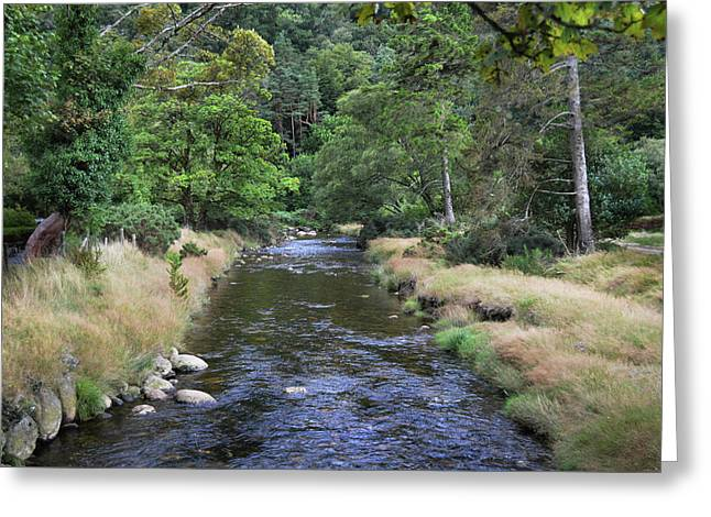 Greeting Card featuring the photograph Glendasan River. by Terence Davis