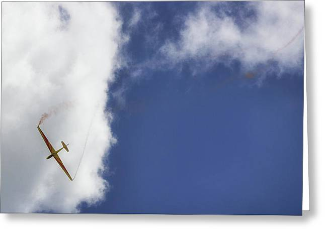 Glider Greeting Card by Martin Newman