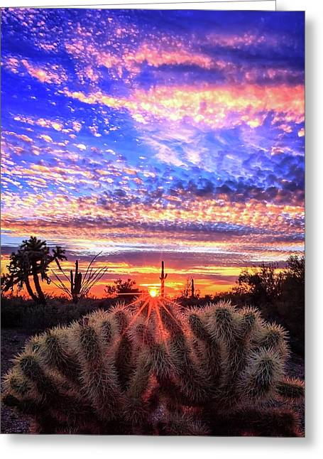 Glimmering Skies Greeting Card