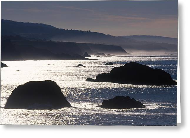 Glittering Sea Greeting Card by Soli Deo Gloria Wilderness And Wildlife Photography