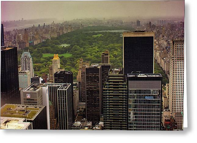 Gloomy Central Park Greeting Card by Martin Newman