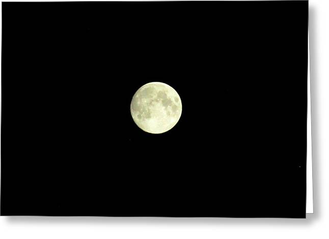 Glorious Moon  Greeting Card by Danielle  Parent