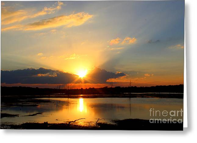 Glorious Sunset Greeting Card by Kathy  White