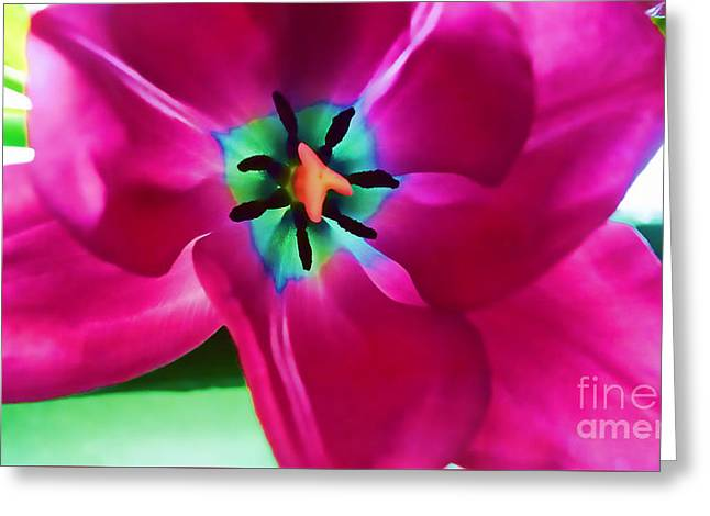 Greeting Card featuring the photograph Glory Hallelujah by Roberta Byram