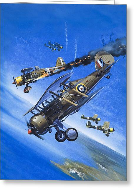 Gloster Gladiator Greeting Card by Wilf Hardy