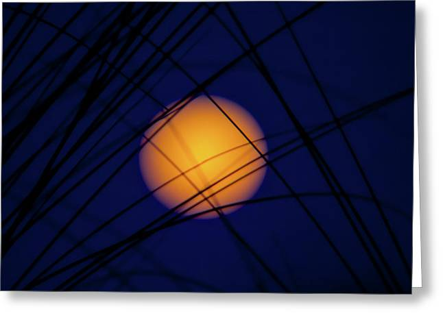 Glow Of The Super Moon Greeting Card