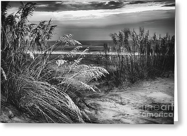 Greeting Card featuring the photograph Glowing Dunes Before Sunrise On The Outer Banks Bw by Dan Carmichael