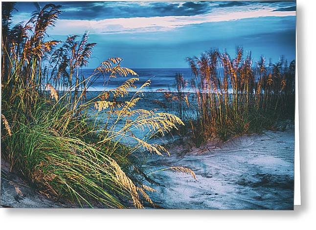 Greeting Card featuring the photograph Glowing Dunes Before Sunrise On The Outer Banks by Dan Carmichael