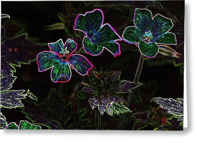 Glowing Flowers Greeting Card by Scott Gould