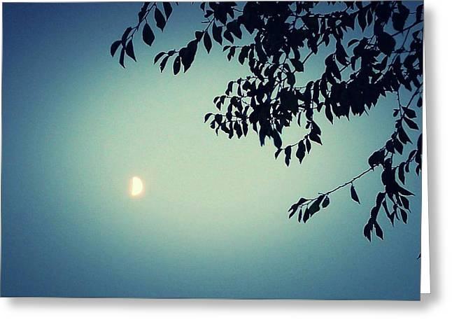 Glowing Moon  Greeting Card