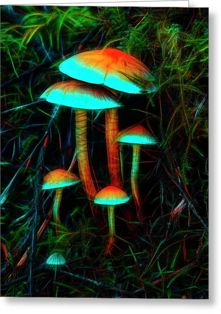 Greeting Card featuring the photograph Glowing Mushrooms by Yulia Kazansky