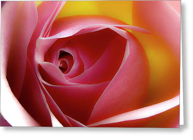 Glowing Rose Hdr Greeting Card