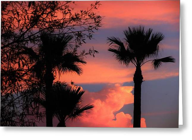 Greeting Card featuring the photograph Glowing Sky by Mistys DesertSerenity