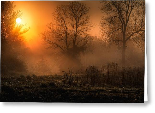 Glowing Sunrise Greeting Card by Everet Regal