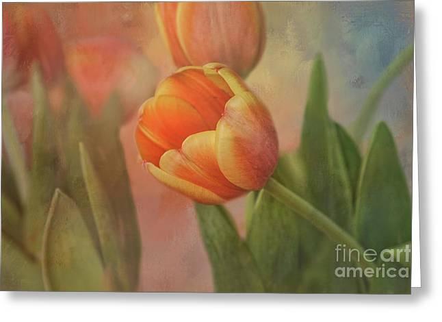 Glowing Tulip Greeting Card