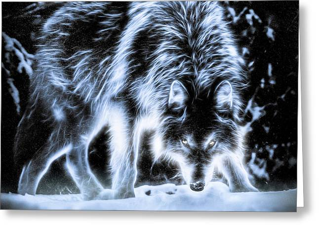 Greeting Card featuring the photograph Glowing Wolf In The Gloom by Rikk Flohr