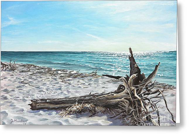 Gnarled Drift Wood Greeting Card by Joe Mandrick