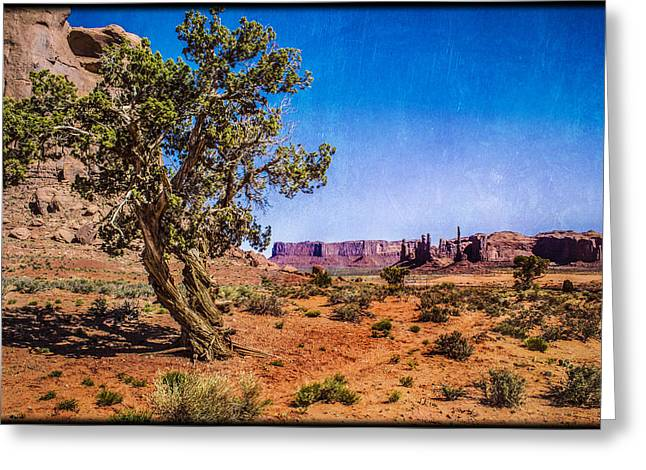 Gnarled Utah Juniper At Monument Vally Greeting Card by Roger Passman