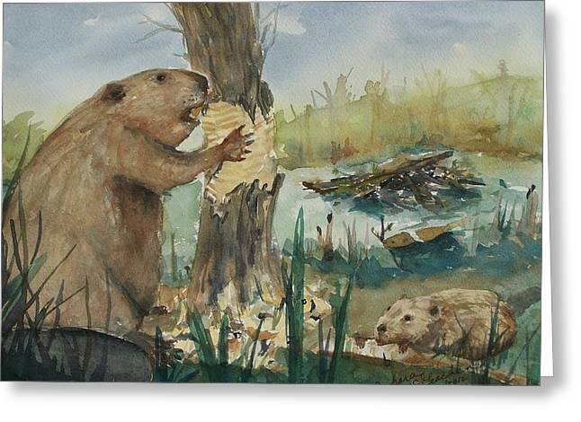 Gnawing Greeting Cards - Gnawing Beaver Greeting Card by Barbara McGeachen
