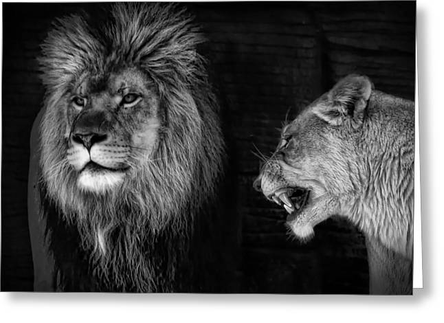 Greeting Card featuring the photograph Go Hunting - I'm Hungry by Ken Barrett