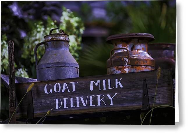Goat Milk Delivery Greeting Card by Garry Gay