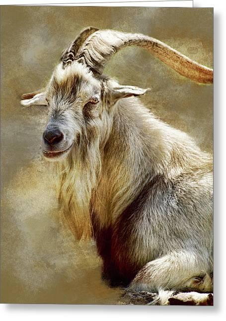 Goat Portrait Greeting Card