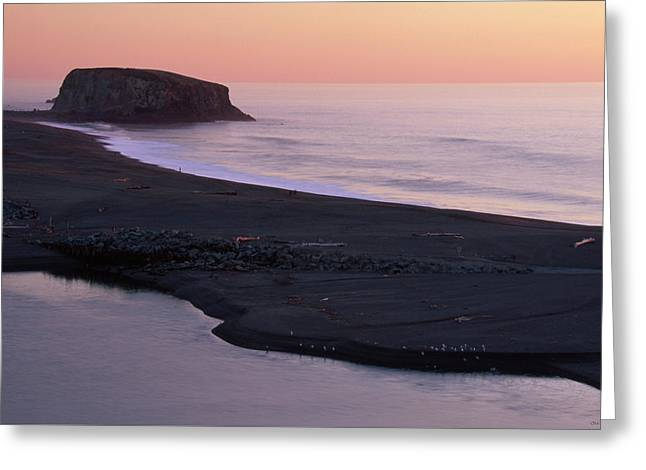 Goat Rock State Beach Greeting Card by Soli Deo Gloria Wilderness And Wildlife Photography