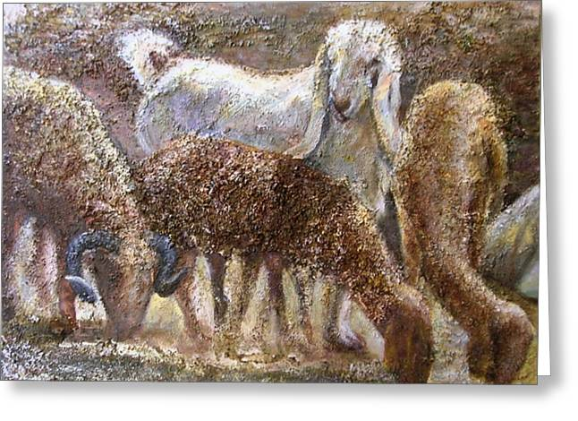 Goat With Sheep Greeting Card by Sylva Zalmanson