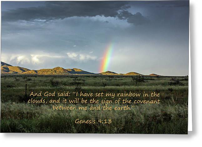 God's Covenant To The Earth Greeting Card