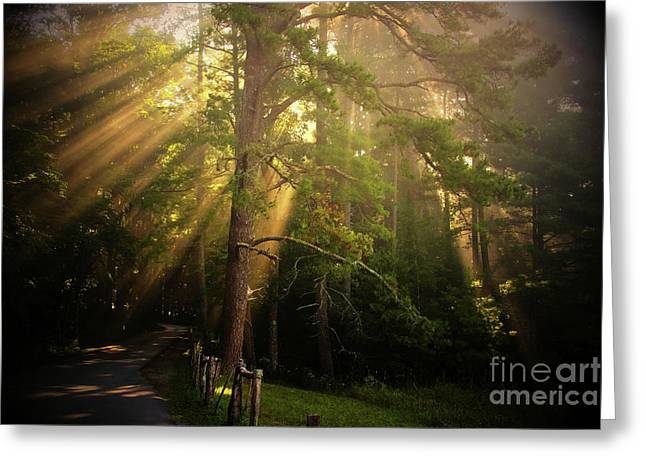God's Light 2 Greeting Card by Geraldine DeBoer