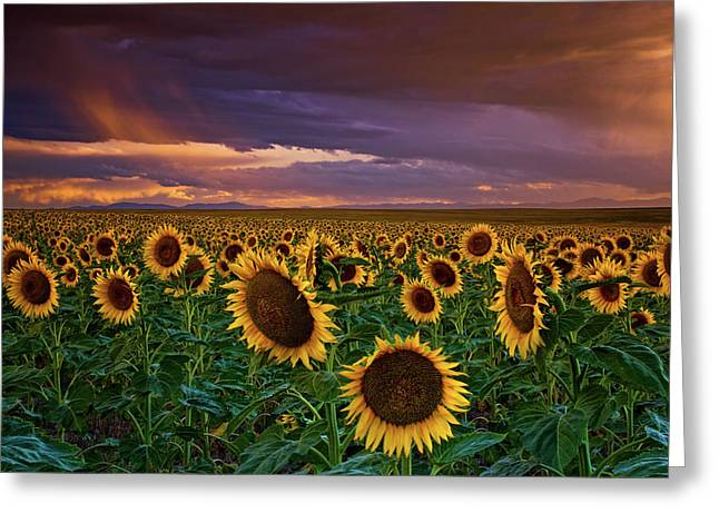 God's Painted Sky Greeting Card