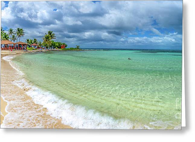 Goff's Caye Belize Pano Greeting Card