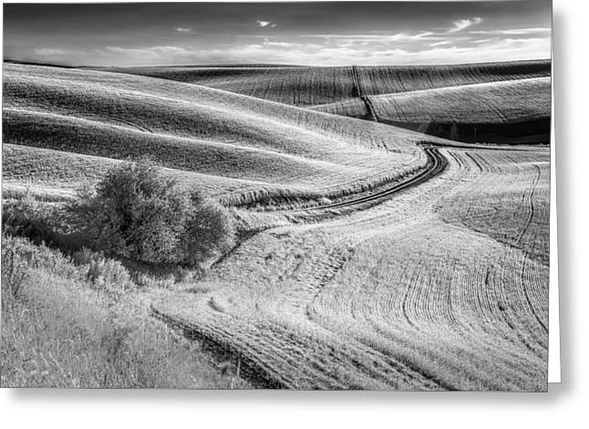 Going Down That Road Greeting Card by Jon Glaser