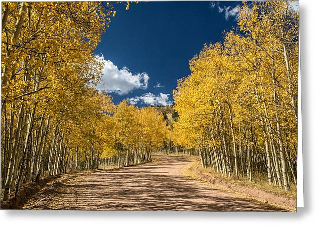 Gold Camp Road Greeting Card