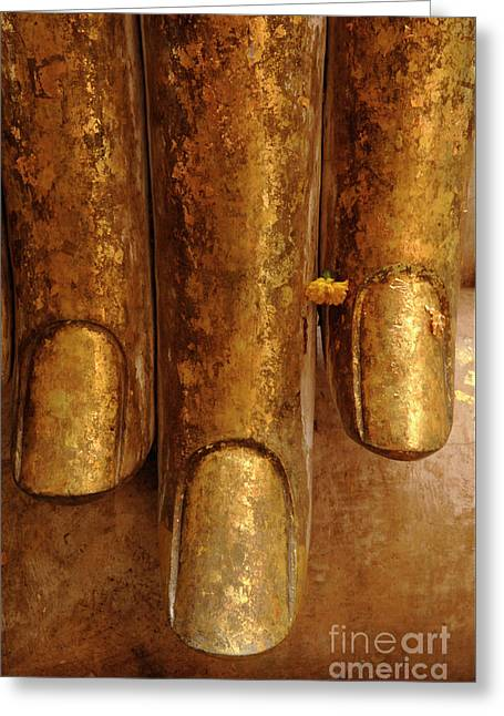 Gold Fingers Greeting Card by Bob Christopher