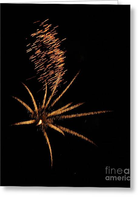 Gold Star Tail Greeting Card by Norman Andrus
