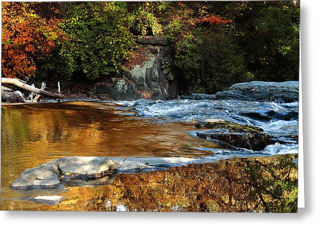 Gold Water By The Thetford Bridge Greeting Card