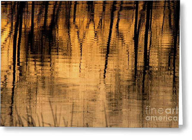 Golden Abstract Greeting Card by Shevin Childers