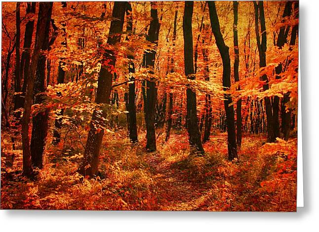 Golden Autumn Forest Greeting Card by Gabriella Weninger - David