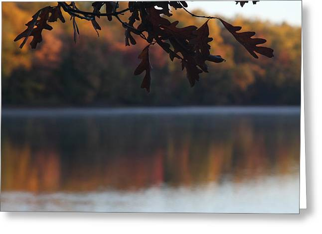 Greeting Card featuring the photograph Golden Autumn by Vadim Levin