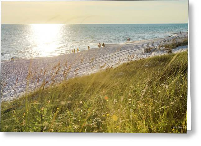 Golden Beach Afternoon Greeting Card