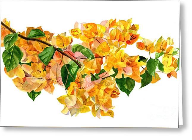 Golden Bougainvillea Greeting Card by Sharon Freeman