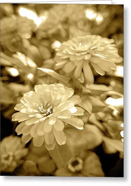 Golden Bouquet Greeting Card by Sean Davey