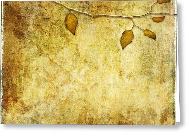 Golden Branch Of Hope  Greeting Card