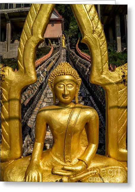 Golden Buddhas Greeting Card by Adrian Evans