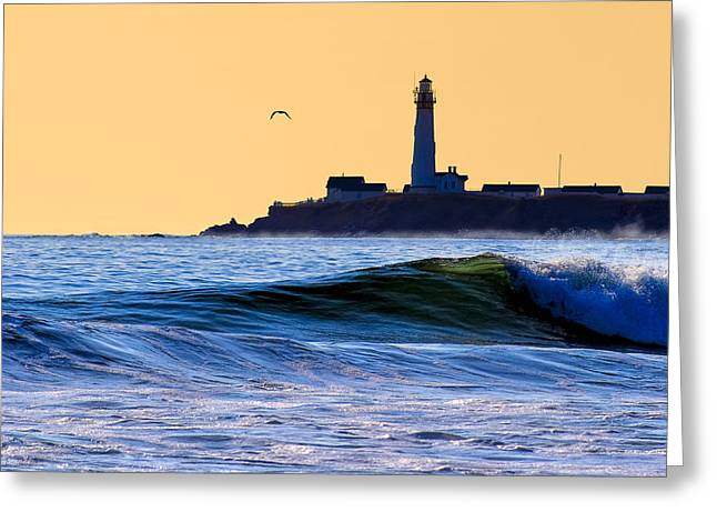 Golden California Coast - Pigeon Point Lighthouse Greeting Card by Mark E Tisdale